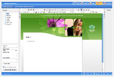 Screen shot of editing a DIY website pages