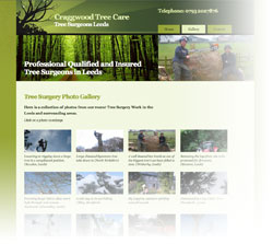 Tree Surgeons Website Design